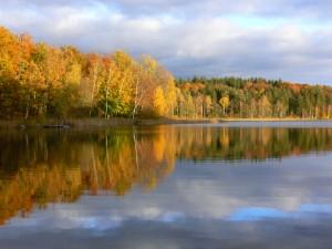 Efterårsfarver - her er så smukt om efteråret