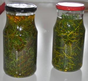 olie-timian-og-rosmarin